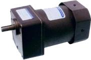 1-phase 15W mini-motor motor 15W Dolin