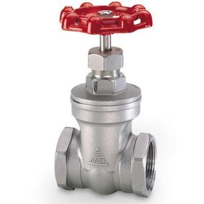 Stainless steel door valve 27 TGCN-30316 VietnamFasteners