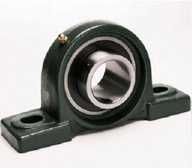 bearing UCP 206 Asahi