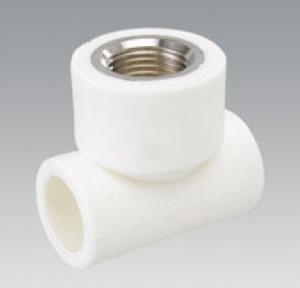 32/5000 PPR lace in 20x1 / 2 inch TGCN-39354 VESBO